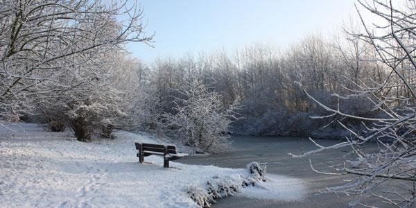 Image result for winter sundays